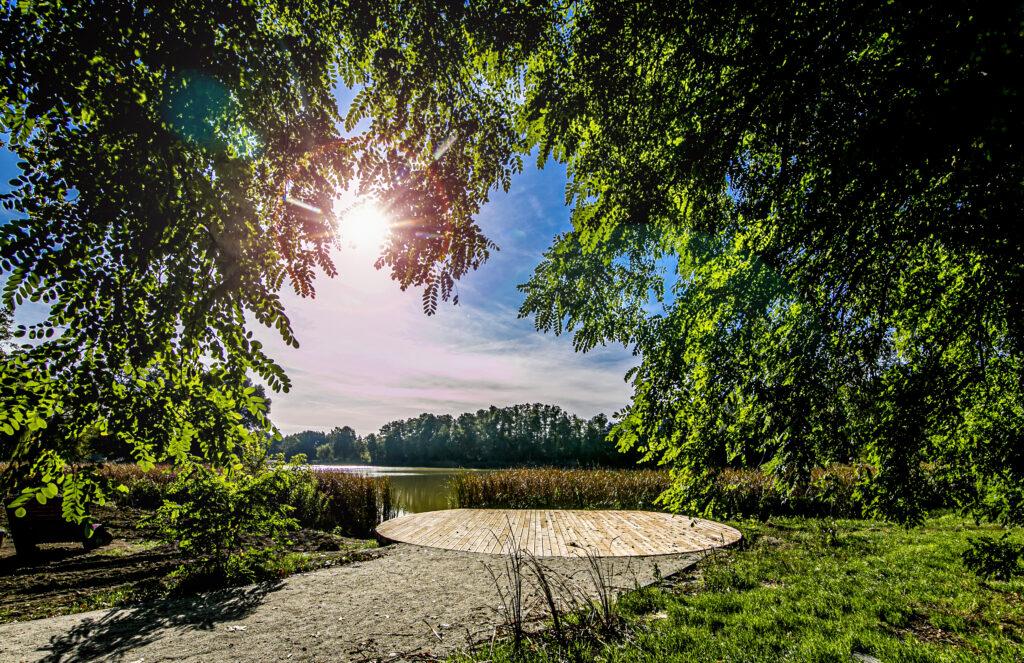 Zdjęcie: park w Szczodrem